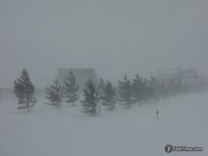 Strong wind makes horizontal snowfall